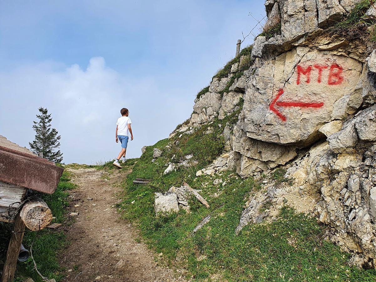 Ausflüge mit Kindern, Ausflüge mit Teenager, Bayern, Wandern, Biken